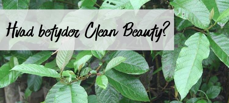 Hvad betyder ordet CLEAN inden for beauty?